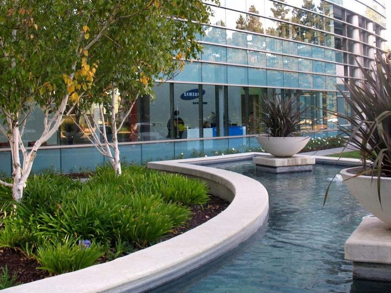 building, trees, water, glass